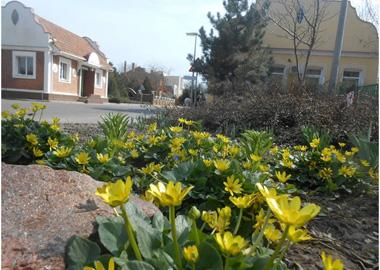 Весна на улицах поселка