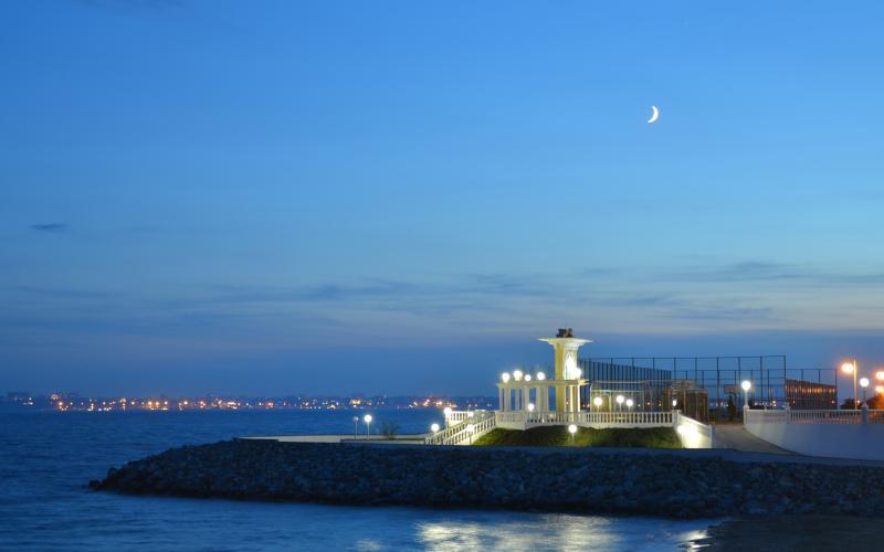 Сосновый берег ночь - 15.JPG